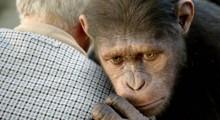 apes05rv2