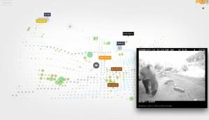 Bear71_Sundance_Screenshot
