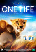 one_life_ver5