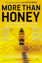 PIC_4_HONEY