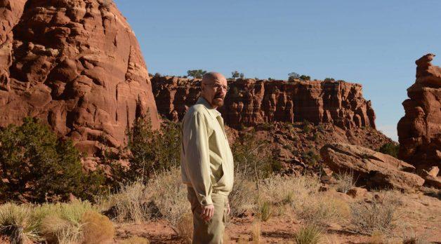 Breaking Bad (Photo courtesy of Usrula Coyote/AMC)